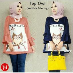 BR13149 - 58341 TOP OWL - salem